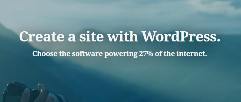wordpress programmierer 1