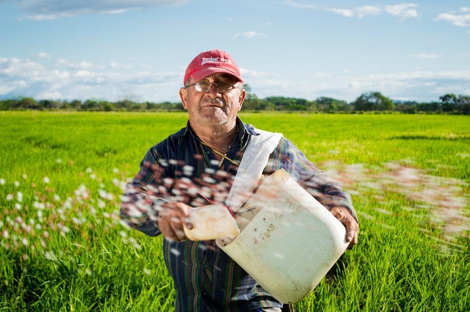 landwirt bild 1